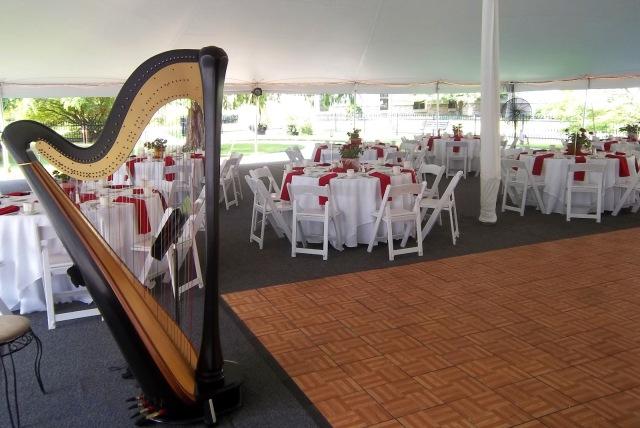 Notre_dame_wedding_musician